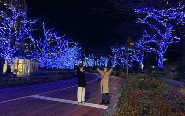 【トレンド部】六本木の東京ミッドタウンのイルミネーションとパレタスのスイーツを満喫